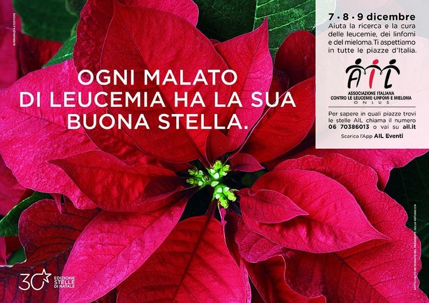 Prezzo Stella Di Natale Ail.In 180 Piazze Della Provincia Di Cuneo Appuntamento Con La 30
