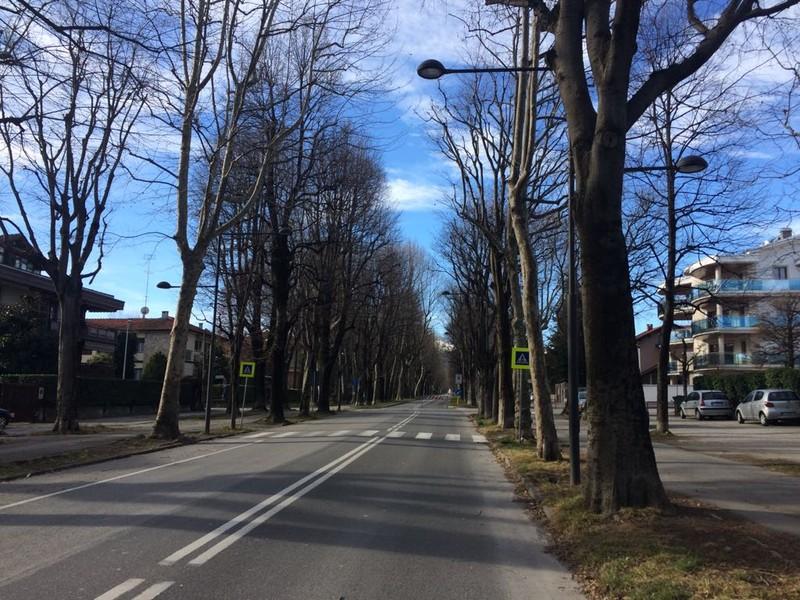 Area pedonale di Viale degli Angeli a Cuneo revocata per questo fine ... 5e61a274996