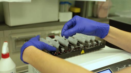 Coronavirus Piemonte: quattro morti in Granda nelle ultime 24 ore