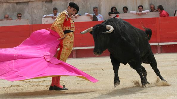"""Corrida Image martiniana po, è il momento della """"corrida"""", presso il campo da"""