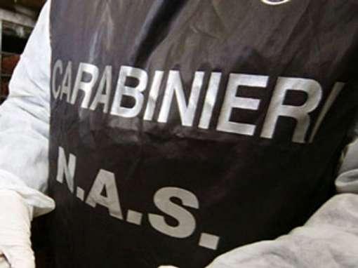 Donna del Braidese ritenuta responsabile di tentato omicidio aggravato premeditato: i dettagli domani a Cuneo