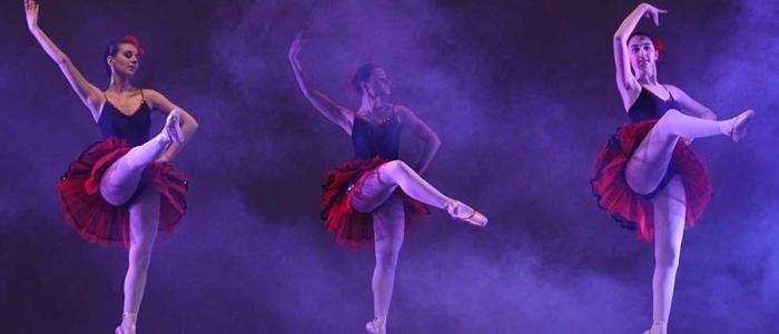 la maison de la danse alza il sipario teatro toselli di cuneo targatocn it