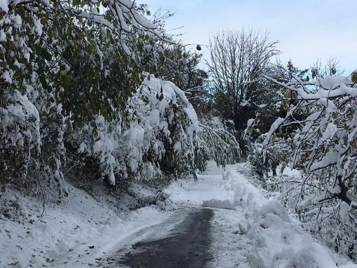 Continua la fase depressionaria: ci attendono nevicate a bassa quota e piogge diffuse
