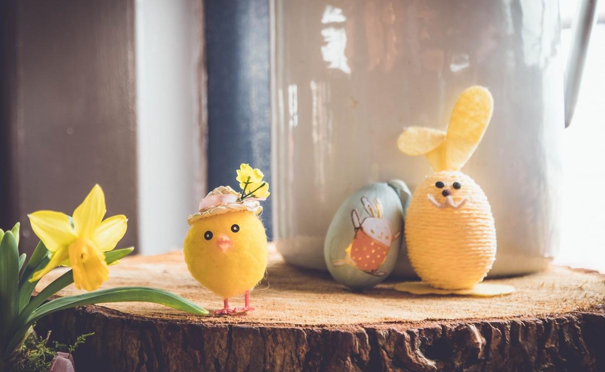 Piante Da Regalare A Pasqua iorestoacasa anche a pasqua e pasquetta, nonostante splenda