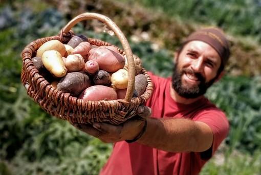 """Daniele Landra dell'azienda """"Al Chersogno"""" con un cesto di patate novelle appena raccolte"""
