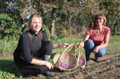 Debora e mamma Giuliana, presidente del Consorzio del Söfran, con i fiori di zafferano appena raccolti