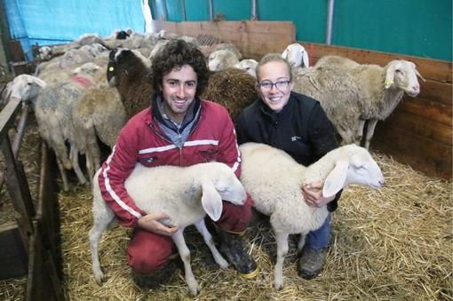 Matteo e Sara nella stalla di Borgo San Dalmazzo con le pecore e due agnelli di un paio di mesi di vita