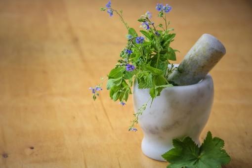 Essica innova la filiera delle Erbe Aromatiche