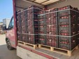 Le cassette di fagioli rossi freschi in partenza per il mercato di Boves