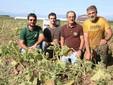 Con due dipendenti stagionali nel campo di zucche