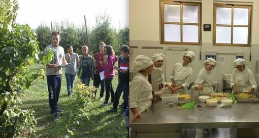 Gli studenti dell'Agrario all'azienda sperimentale in frazione Madonna dell'Olmo di Cuneo e gli allievi dell'Alberghiero impegnati nella preparazione della pasticceria