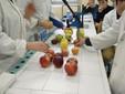 """Gli studenti del """"Virginio-Donadio"""" nelle prove di laboratorio"""