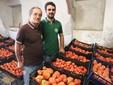 Nel magazzino dei pomodori ricavato all'interno dell'antica stalla