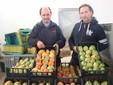 I fratelli Giuliano con le cassette di pomodori