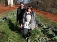 Valentina e Alessandro nell'orto