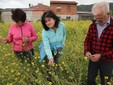 Alda, Cinzia e Andrea nel campo di rape utilizzate per il sovescio