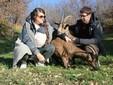 """Valentina e Alessandro """"coccolano"""" due capre allevate in azienda"""