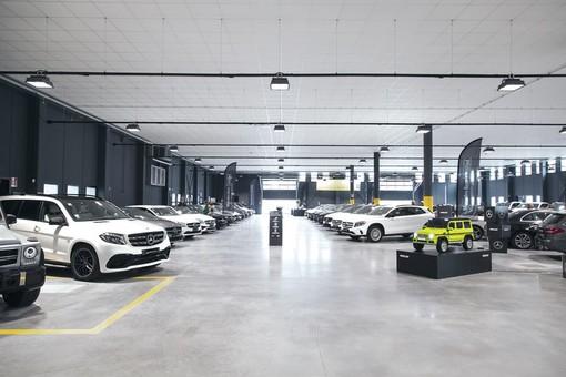 La tua nuova auto è da Trivellato, i migliori prezzi di mercato