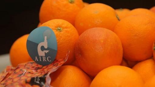In vendita a Fossano le arance della salute di AIRC
