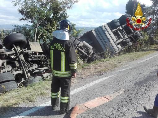 Camion si rovescia a Barolo: duecento maiali morti nell'incidente