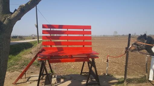 Bra, spunta una grande panchina rossa nell'oasi verde dei Tetti Milanesi
