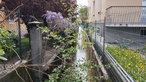 Borgo San Dalmazzo, ecco l'acqua nel canale irriguo Bealera Nuova