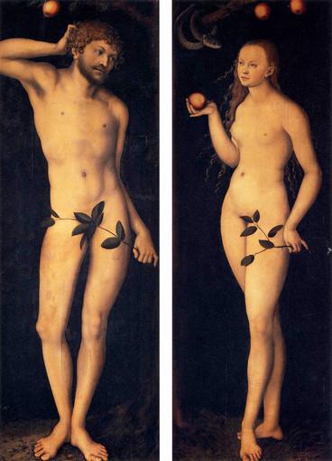 Il mal di mele (terza parte)