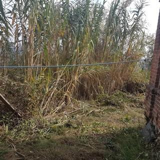 In arrivo 770mila euro per la sicurezza del cimitero di Vezza d'Alba