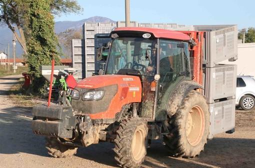 Un trattore al lavoro in un'azienda agricola