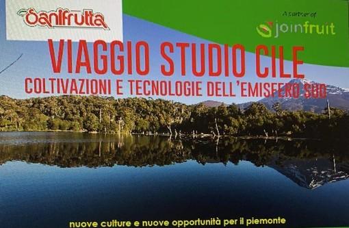 """""""Viaggio di studio"""" in Cile dedicato alla frutticoltura organizzato dalla Polaris Viaggi"""