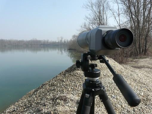 Parco del Monviso, realizzato il censimento degli uccelli acquatici: Germano Reale e Alzavola le specie più presenti