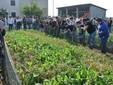 Un gruppo di persone in visita all'allevamento