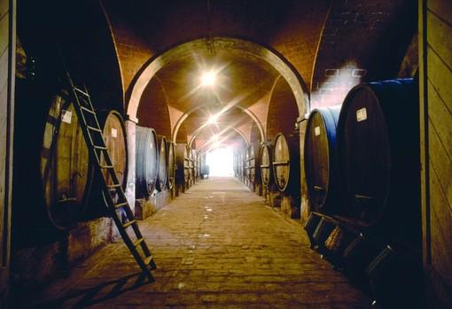 Grandi vini vanno all'asta: se le Langhe fan concorrenza a Borgogna e Bordeaux