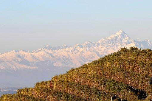Il foliage tra le colline del territorio riconosciuto dall'Unesco, incontro ad Alba