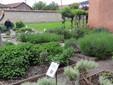Il giardino delle Essenze