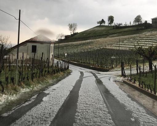 La grandine sulle colline di Diano d'Alba (foto di Cristina Fracchia)