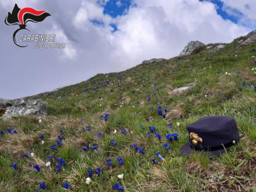 """Turismo in alta montagna: i Carabinieri Forestali pronti a vigilare sul """"buon comportamento"""""""