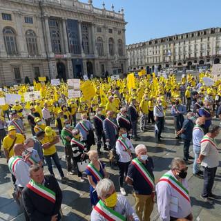 """Cinghiali, l'allarme di Coldiretti Cuneo in piazza Castello: """"Un incidente ogni 48 ore è causato dalla fauna selvatica"""""""