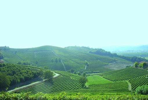 Monferrato Autentico inaugura Botteghe d'Italia: botteghe agricole per promuovere i prodotti e attrarre i turisti