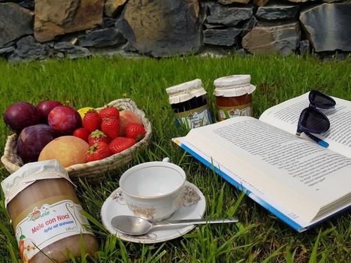 Frutta, miele e formaggi freschi: i consigli di Coldiretti Cuneo per affrontare lo stress da Maturità