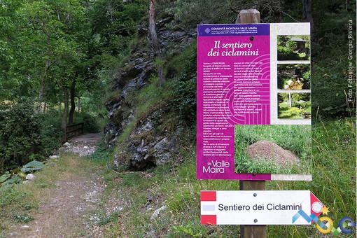 """Il """"Sentiero dei ciclamini"""" - Foto tratta dal sito www.visitmove.it"""