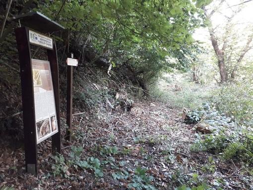 Ripuliti e aperti diversi sentieri, in alta e bassa valle, a Frabosa Soprana