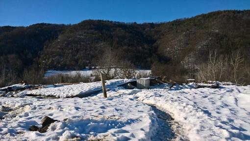 Quel che resta della stalla crollata martedì 20 dicembre a Murazzano