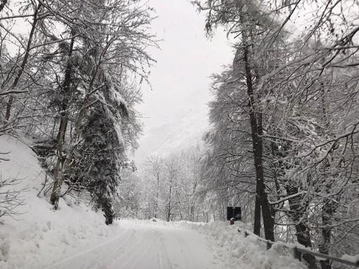 La neve caduta oggi a Strepeis, presso Vinadio, in Valle Stura