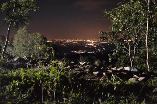 Notturna nel bosco a Pian Munè di Paesana