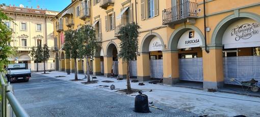 Alba, veste nuova per piazza Ferrero: partito il cantiere per sostituire la pavimentazione