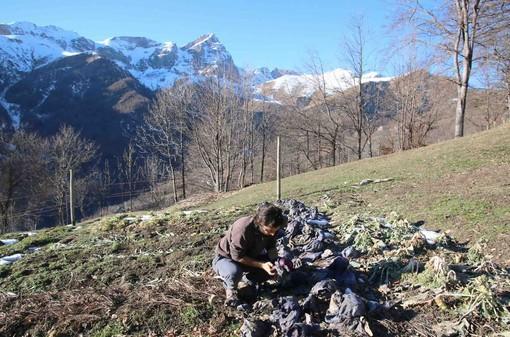 Un giovane agricoltore al lavoro nella sua azienda di montagna