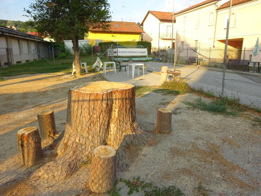 Bra, da albero tagliato ad oggetto di design urbano