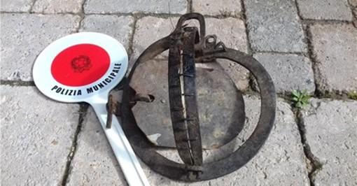 Sommariva del Bosco, cane intrappolato in una tagliola per la caccia di frodo: Municipale lo libera