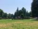 Savigliano, verde pubblico: si procede con gli interventi a zone fino all'8 di agosto